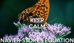 keep-calm-and-solve-navier-stokes-equation-8.jpg